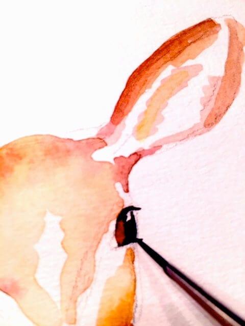 Die Aquarell Illustration des Reh nimmt Formen an. Du siehst wie Dodo das Auge des Rehleins malt.