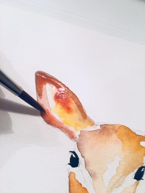 du siehst wie dodo das Reh-Ohr mit Aquarell in Orange und Sepia ausmalt