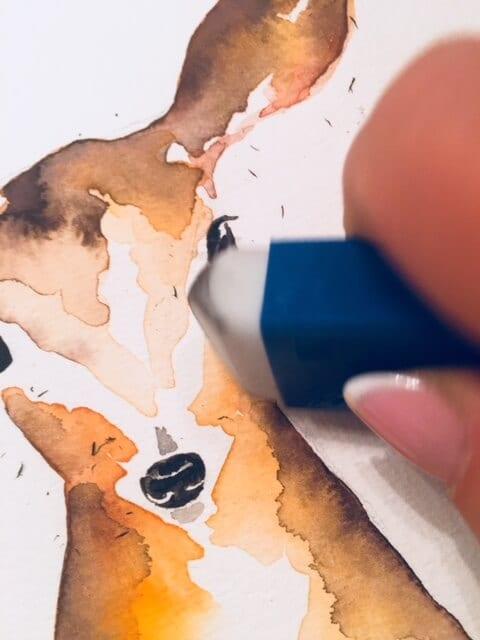 Du siehst wie Dodo die Bleistiftlinien wegradiert.