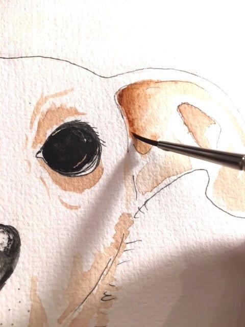 Die siehst wie ich die ockerfarbenen Lasuren für den Hund in Aquarelltechnik male