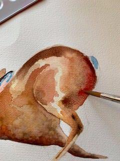Man sieht wie Dodo mit roter Aquarellfarbe den Hasenkörper bemalt, diesmal mit Karmesinrot
