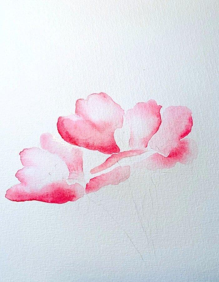 Hier siehst du die einzelnen Blütenpartien des Aquarells Kirschblüten. Dodo zeigt hier das Malen in Aquarell