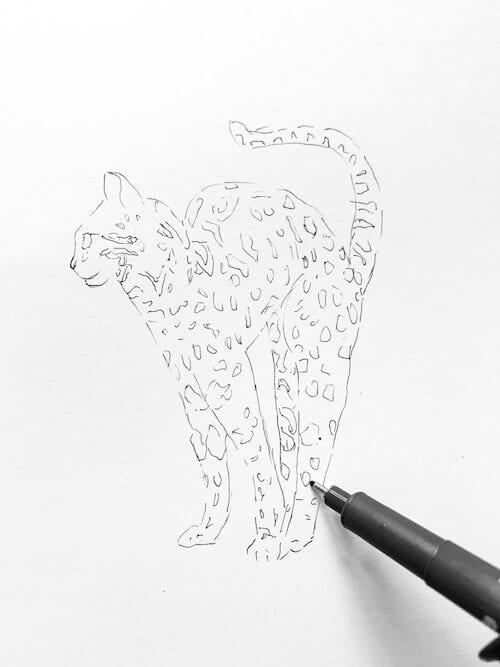 Du siehst, wie die Vorzeichnung der Bengal Katze mit Fineliner nachgezogen wird.