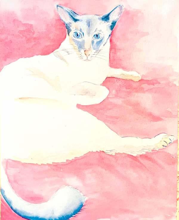 Hier siehst du das fertige Aquarell der Siamkatze.