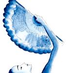 Du siehst den Fächer der Tango Lady im Detail, gemalt mit indogoblauer Aquarellfarbe
