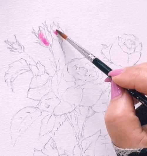 Du siehst wie Dodo die Knospen der Rosen mit rosa Aquarellfarbe malt