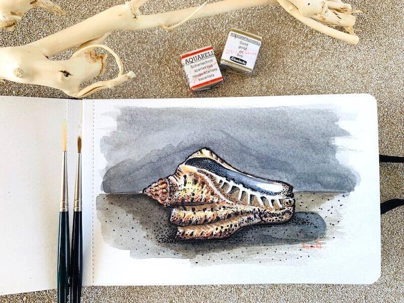 Du siehst das fertige Aquarell einer Muschel von Dodo Kresse für Creative Club