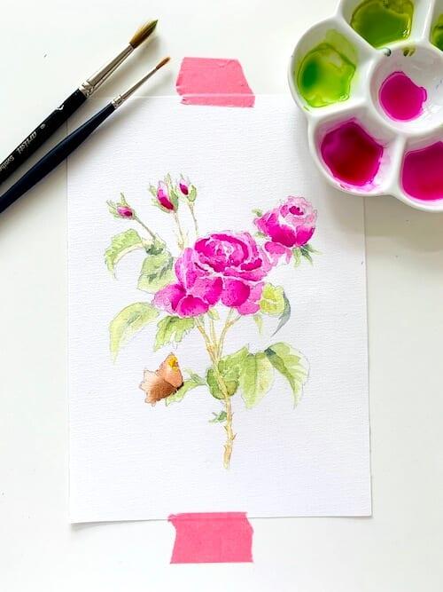 du siehst das fertige aquarell einer rose mit Schmetterling