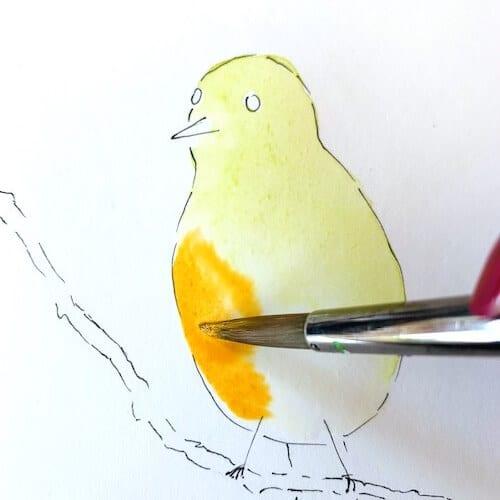 Hier siehst du wie ich den Bauch des Vogels mit orangefarbener Aquarellfarbe bemale