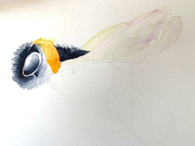 Hier siehst du wie ich die Flügel der Aquarell Biene male