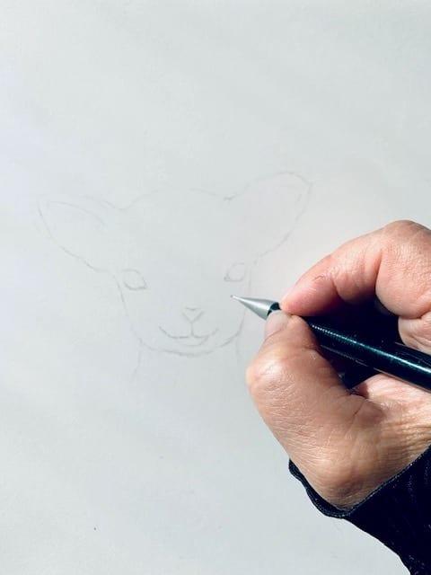 Hier siehst du wie ich das Gesicht des Schafs mit Bleistift skizziere