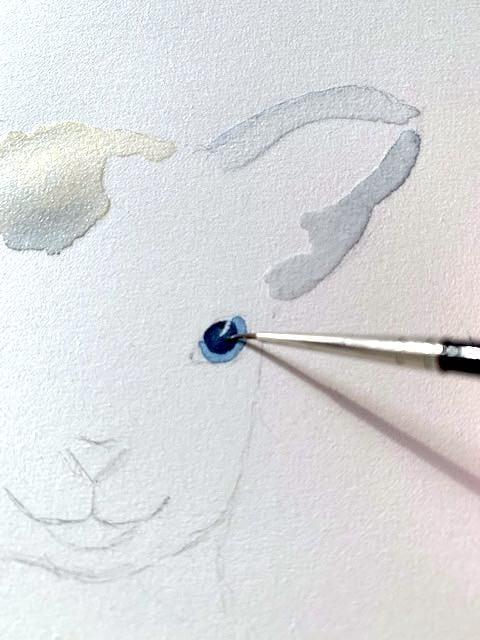 Hier siehst du wie ich die Pupille des Auges male