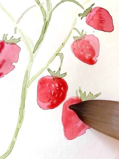 Eine zweite Schicht Aquarellfarbe kommt über die Erdbeeren
