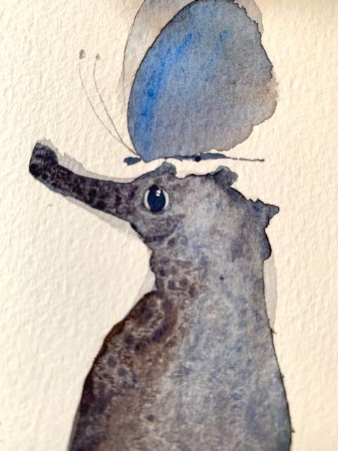 Das Auge des Seepferdchens