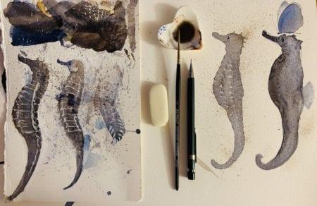 Du siehst das Coverbild zu dem Beitrag Aquarell-Skizzen im Sommer: Seepferdchen