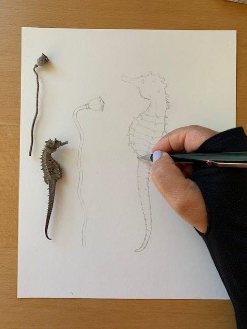 Du siehst die Vorzeichnung zur Aquarell-Skizze mit Bleistift