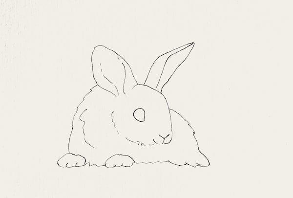 du siehst die Skizze eines Kaninchens