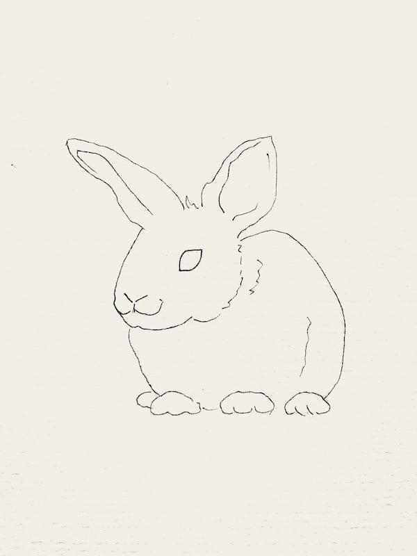 du siehst die Outline eines Kaninchens